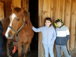 Image of Two Kids & Horse